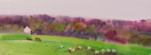 Highland Sheep Painting #2
