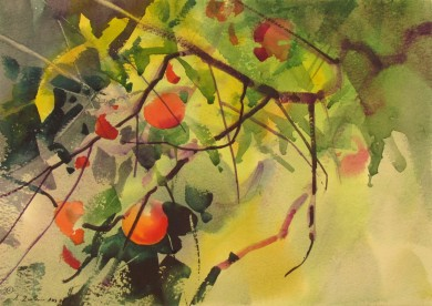 "September Apples, Scotland 14"" X 10"""